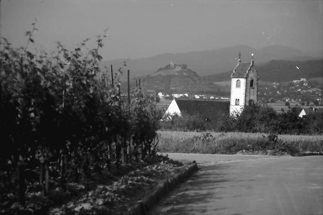 Wettelbrunn: Weinberg mit Kirchturm; Hintergrund Burg Staufen, Bild 1