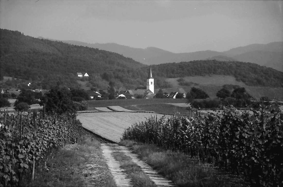 Wettelbrunn: Weinberg mit Kirchturm Ballrechten, Bild 1