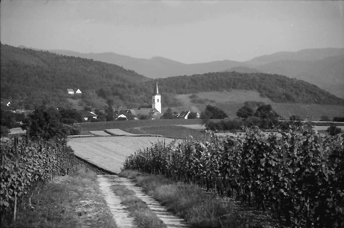 Wettelbrunn: Weinberg mit Kirchturm Ballrechten, Bild 2