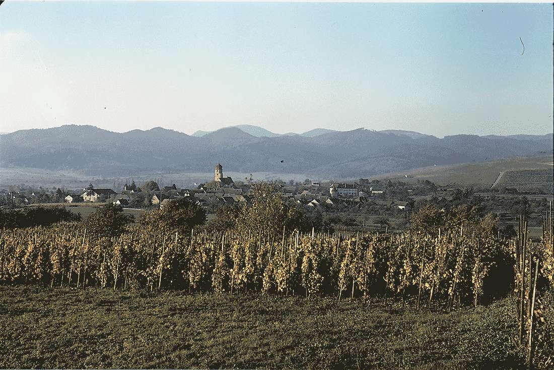 Kirchhofen: Am Batzenberg; Hintergrund Ort, Bild 2