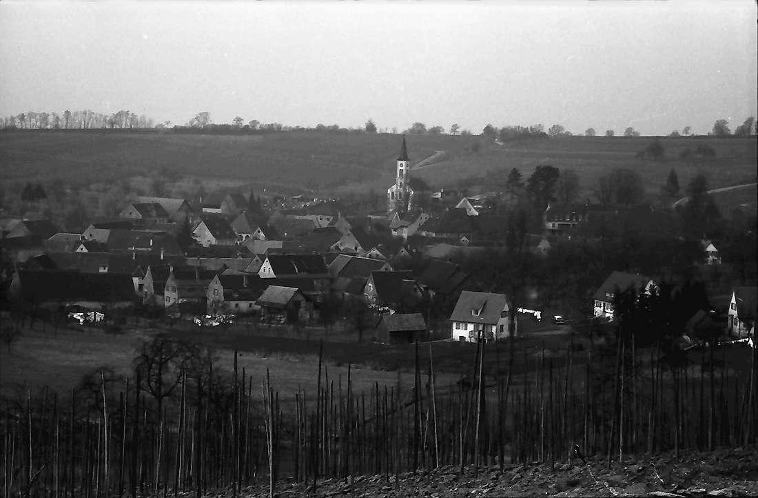 Laufen: Gesamtansicht vom Weinberg; von Süden, Bild 1