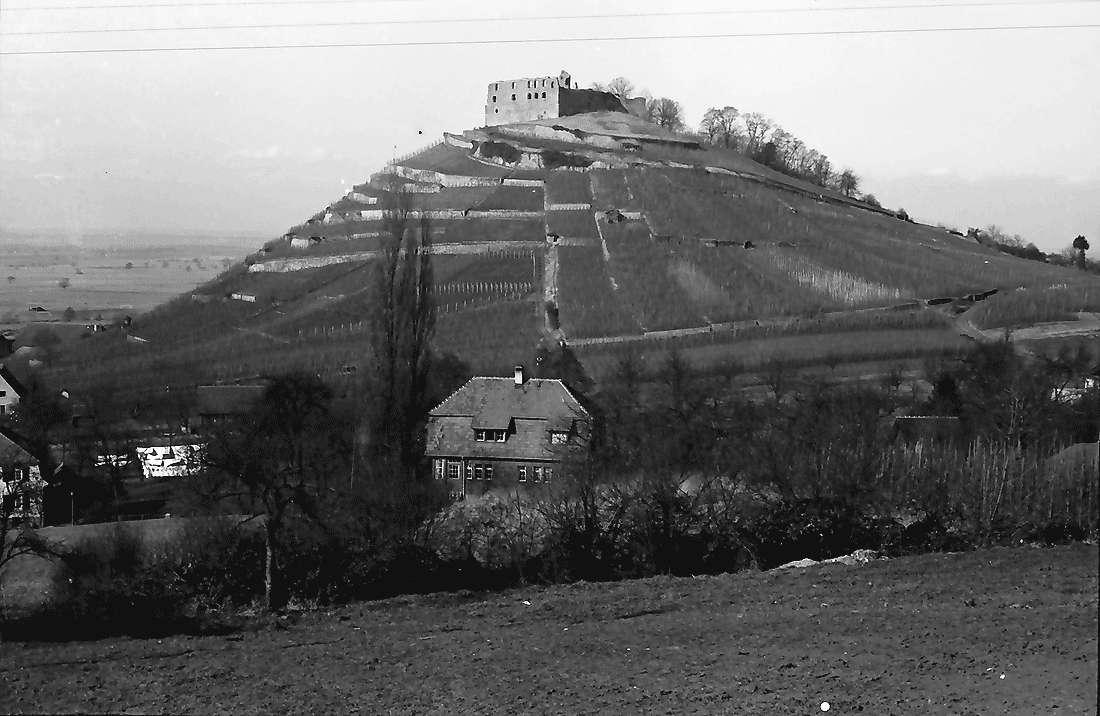 Staufen: Blick auf Schlossberg mit Burg; von der Höhe, Bild 1