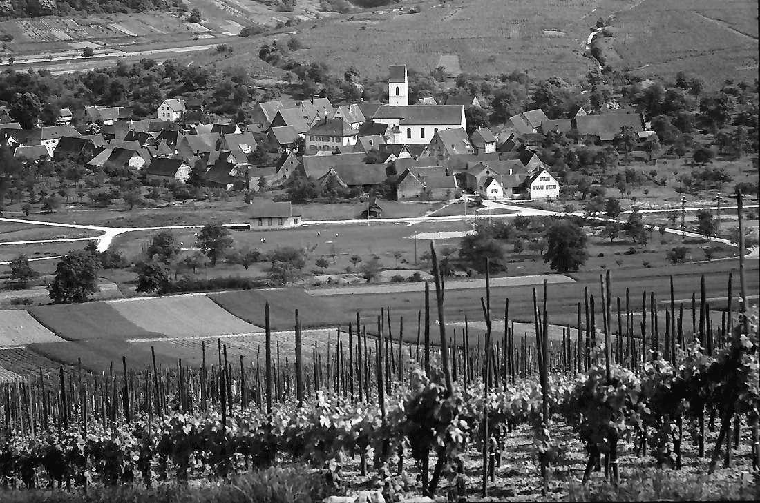 Batzenberg: Blick vom Batzenberg auf Pfaffenweiler, Bild 1