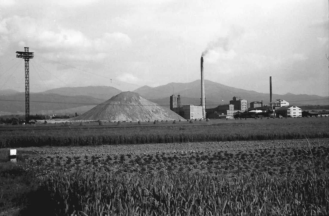 Buggingen: Kaliwerk von Westen; mit Schwarzwald, Bild 1