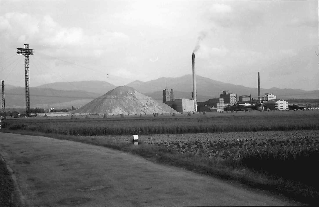 Buggingen: Kaliwerk von Westen; mit Schwarzwald, Bild 2