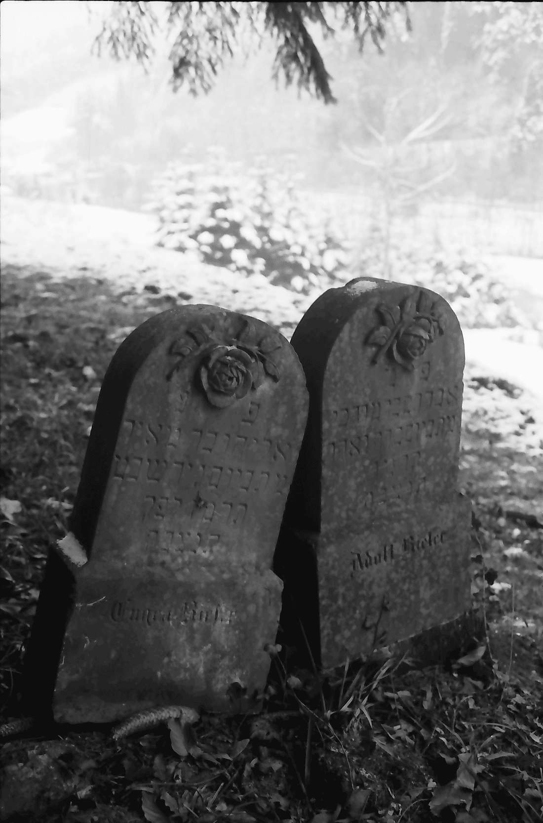 Sulzburg: Judenfriedhof im Schnee; verschiedene Gräber, Bild 2