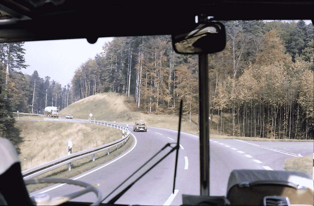 Bollschweil: Neues Straßenstück im Wald; Bollschweil - Sölden, Bild 2
