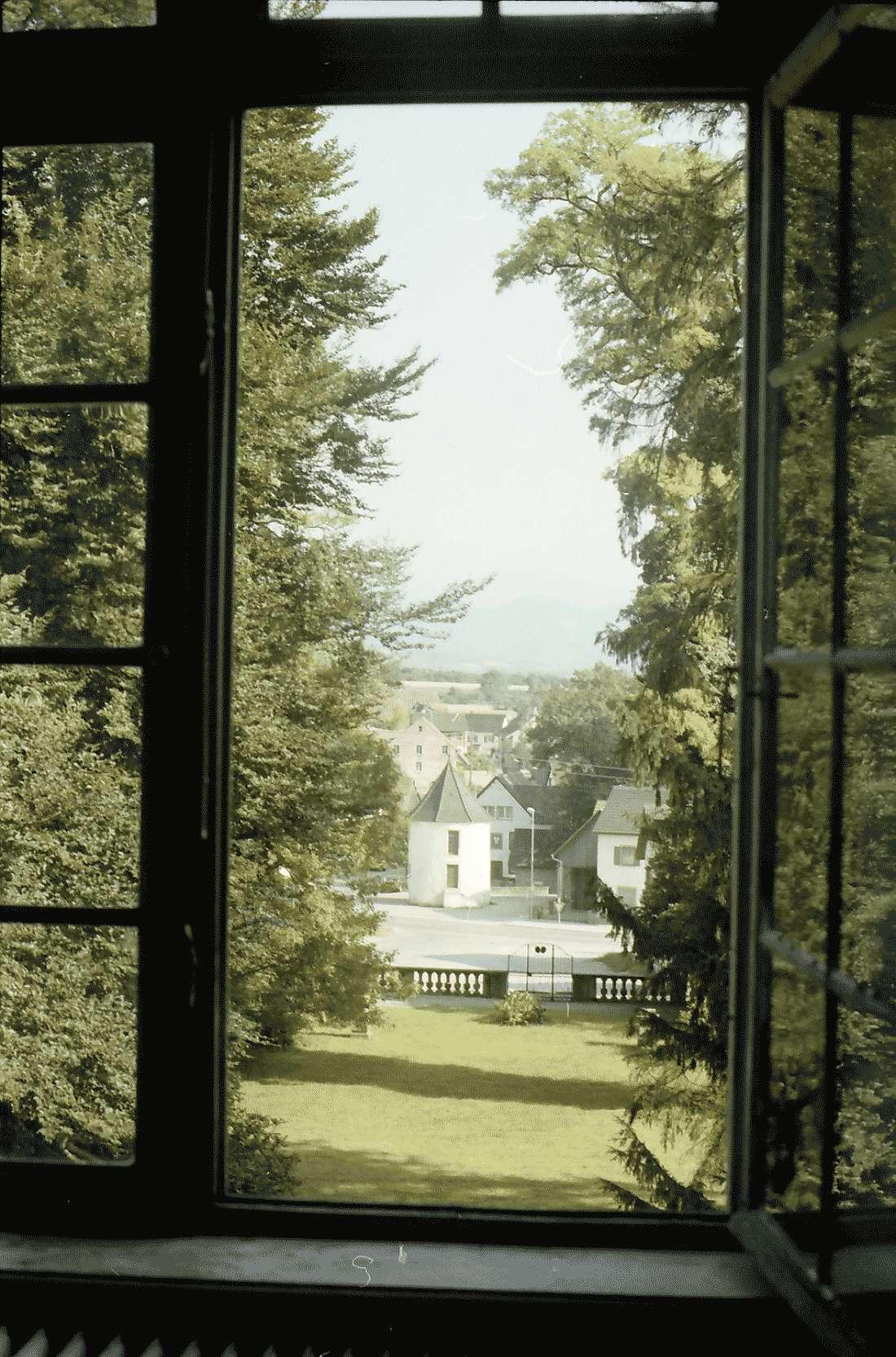 Munzingen: Graf Kageneck Schloss; Ausblick vom Schloss auf Park und Turm, Bild 2