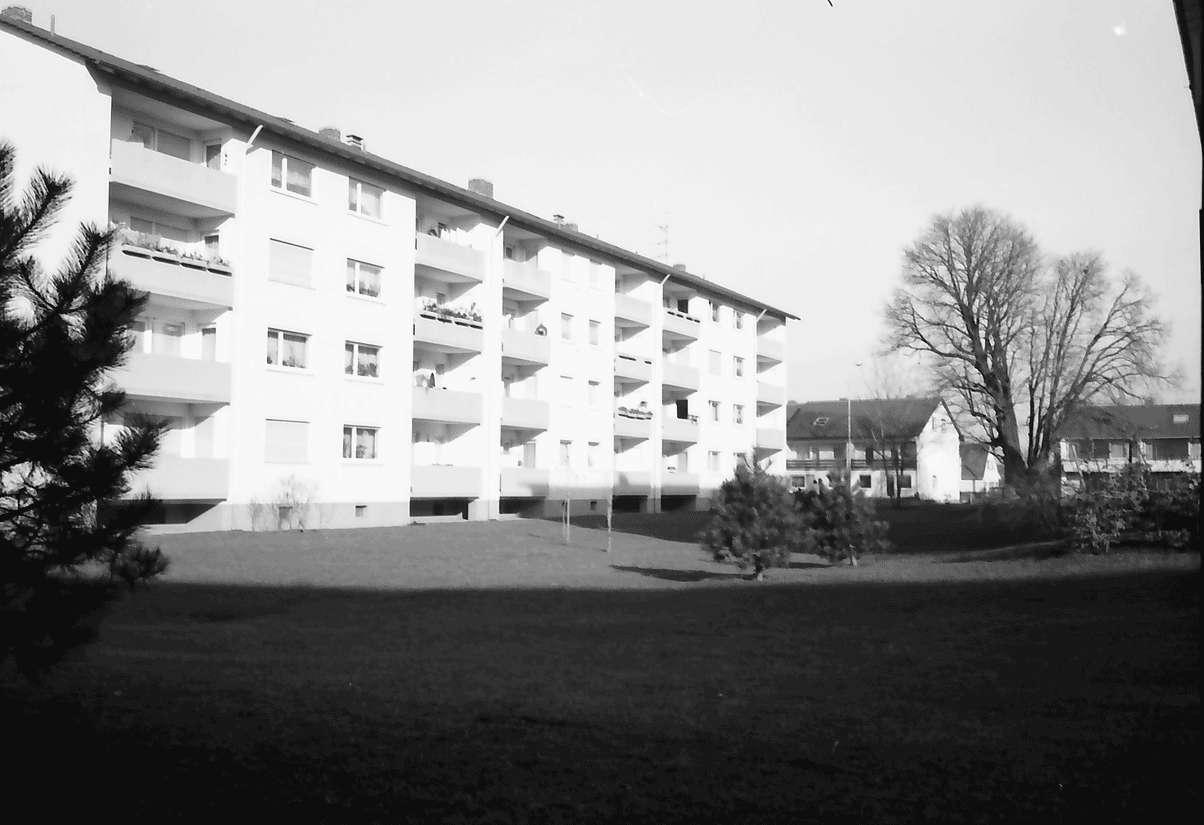 Freiburg; Haslach: Wohnblock mit Grüngelände; Mathias-Blank-Straße; Hintergrund alter Baum, Bild 1