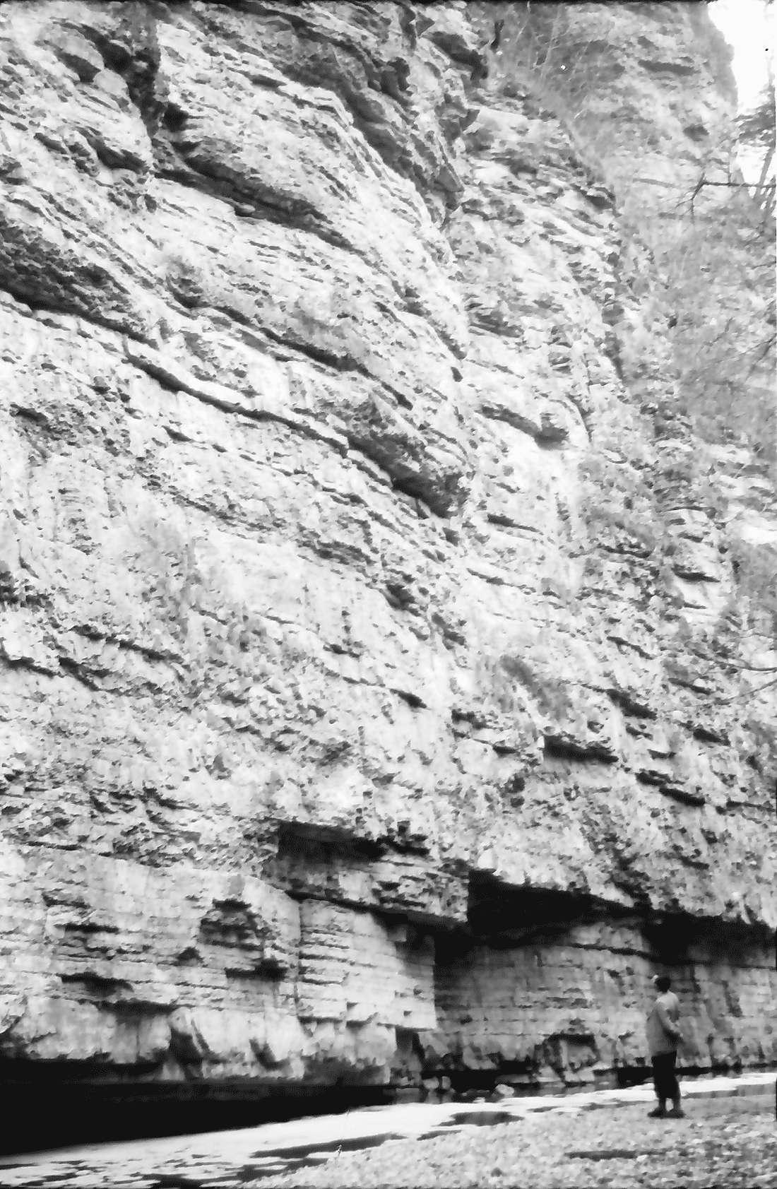 Münchingen: Wutachschlucht an der Felswand auf der Höhe Münchingen, Bild 1