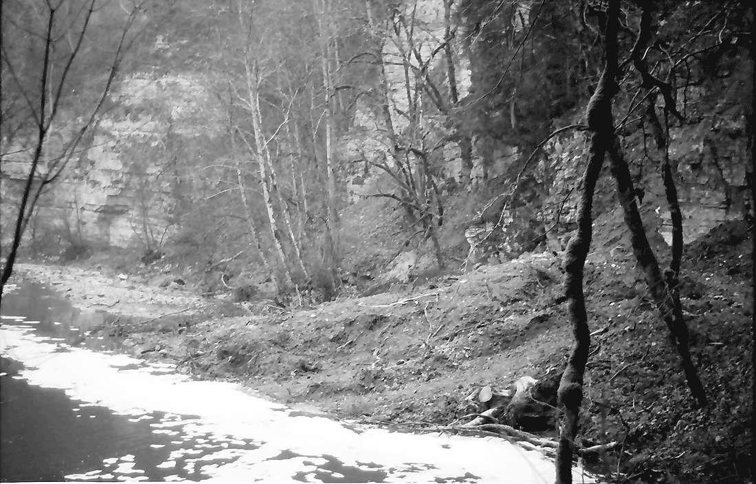 Münchingen: Wutachschlucht; Schuttkegel, Bild 2
