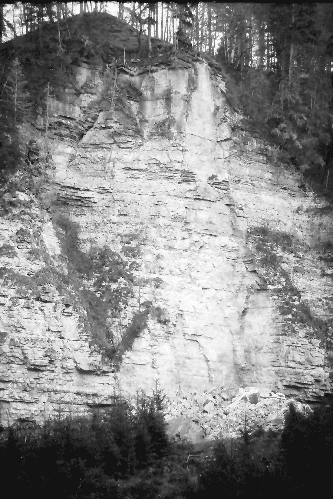 Münchingen: Felssturzkatastrophe am Rümmelefelsen; Bruchstelle mit niedergewalztem Wald; Hochpanoramaaufnahme, Bild 1