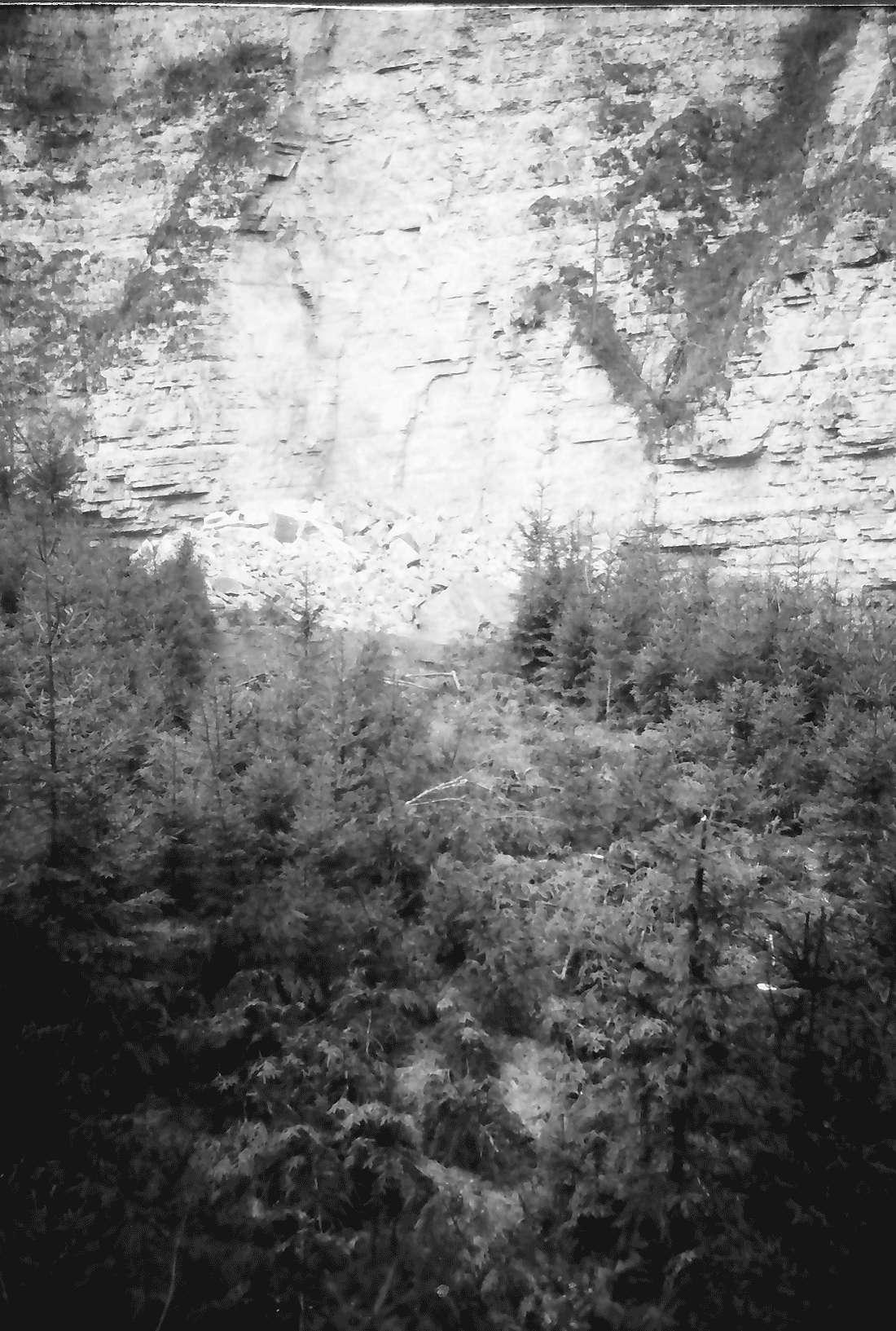 Münchingen: Felssturzkatastrophe am Rümmelefelsen; Bruchstelle mit niedergewalztem Wald; Hochpanoramaaufnahme, Bild 2