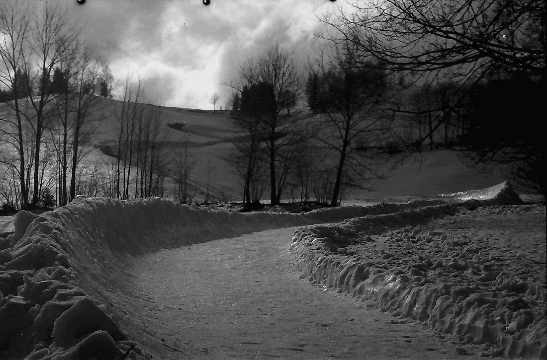 Hinterzarten: Bobbahn; Ende der Bobbahn; Kurve, Bild 2
