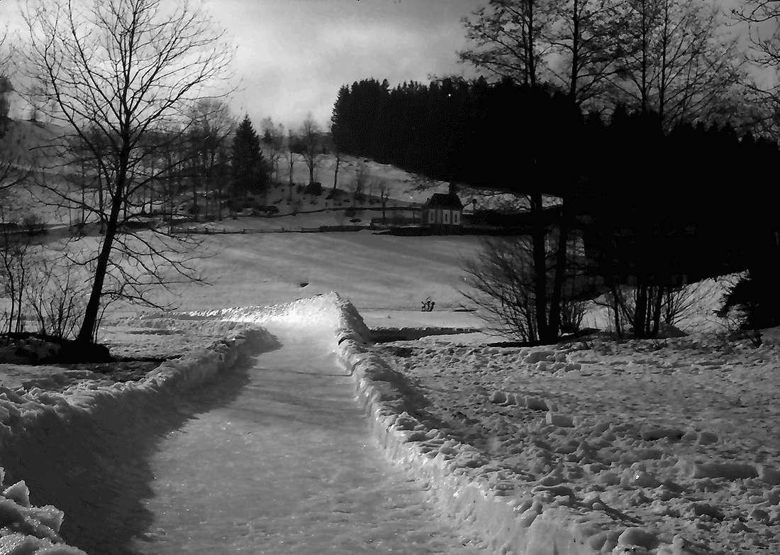 Hinterzarten: Bobbahn; letzte Gerade, Bild 2