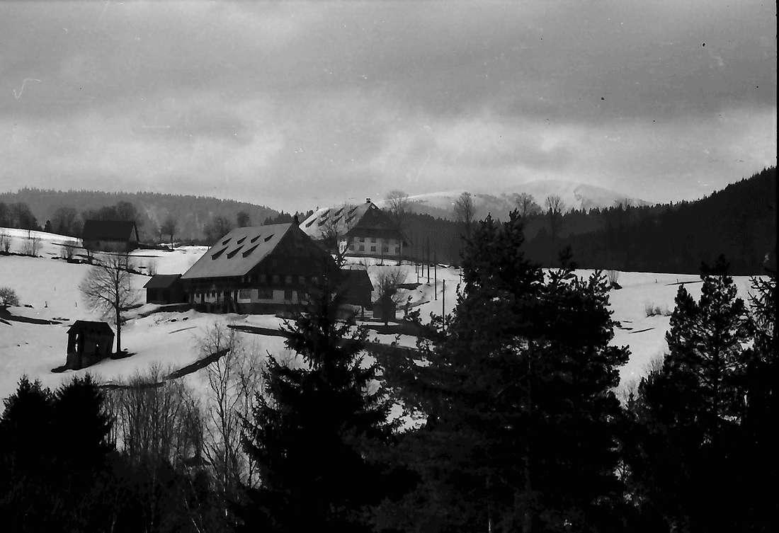 Hinterzarten: Blick über zwei Höfe auf den Feldberg, Bild 2