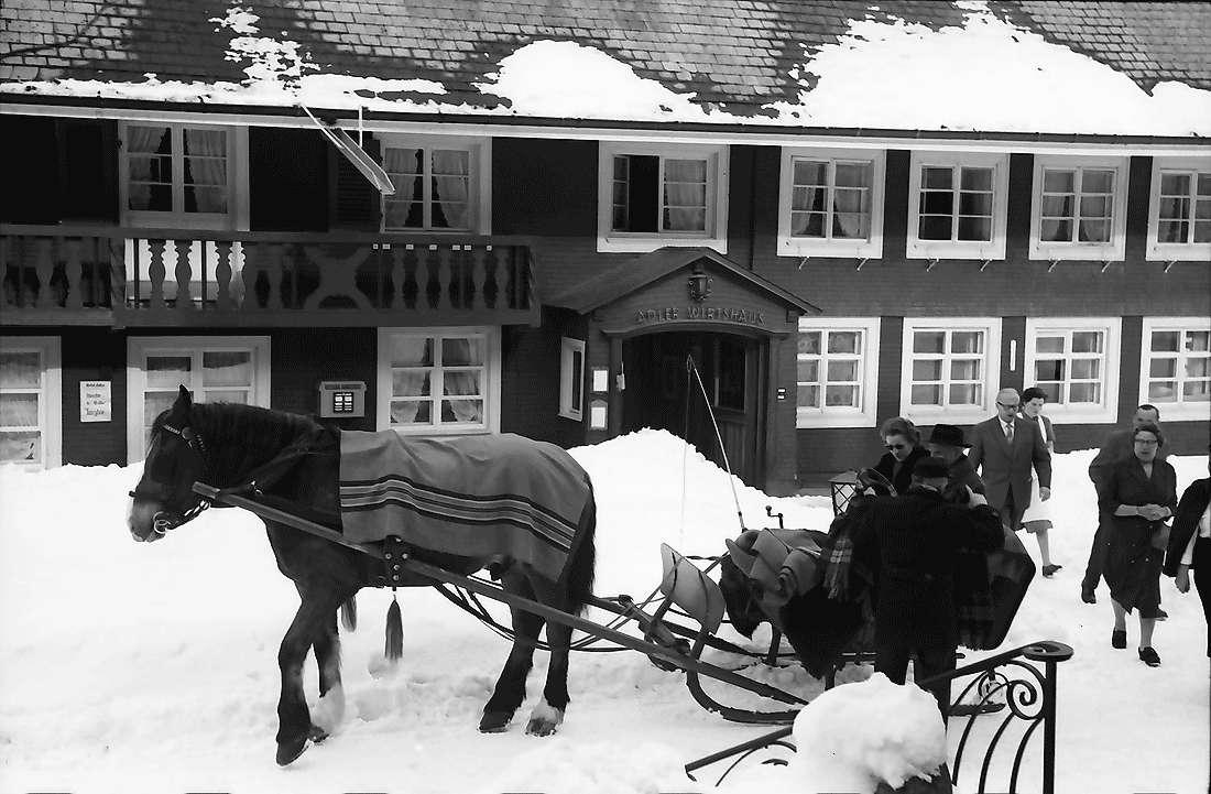 Hinterzarten: Pferdeschlitten vor dem Gasthaus Adler, Bild 2