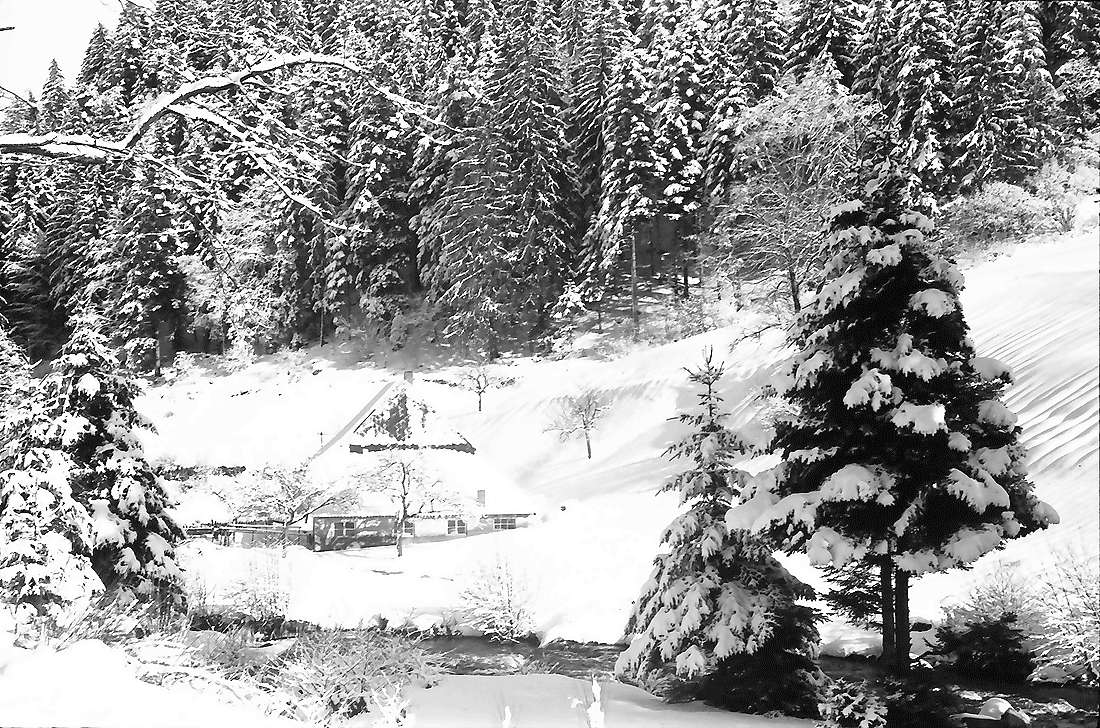 Oberried: Bauernhof im Oberrieder Tal, Bild 2