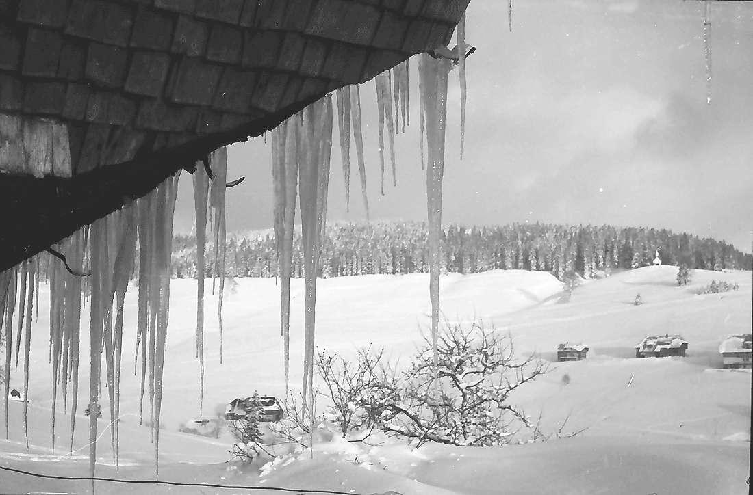 Todtnauberg: Eiszapfen am Bauernhaus; Durchblick, Bild 2