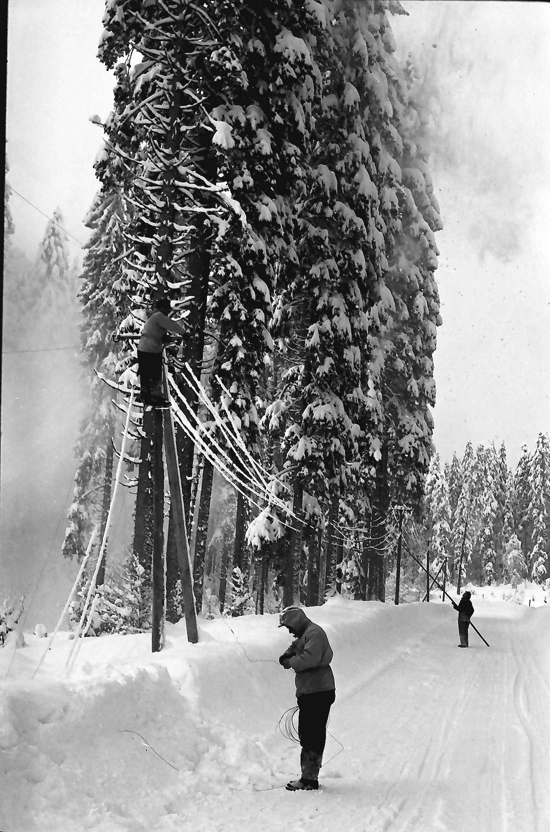St. Blasien - Todtmoos: Straße; Bautrupp beseitigt Schneeschäden an Telefonleitungen, Bild 2