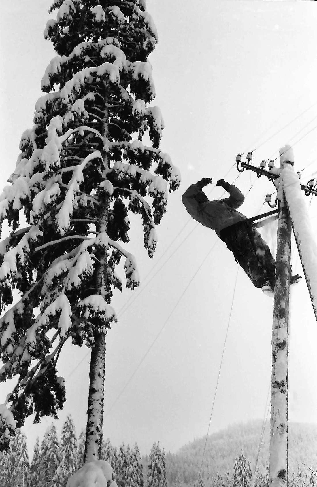 St. Blasien - Todtmoos: Straße; Bautrupp beseitigt Schneeschäden an Telefonleitungen; Arbeiter auf Telefonmast, Bild 1