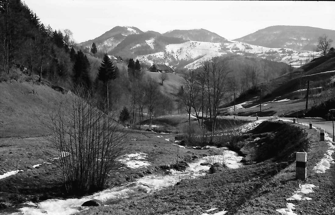 Aitern: Aitertal mit Blick auf Staldenkopf, Bild 2