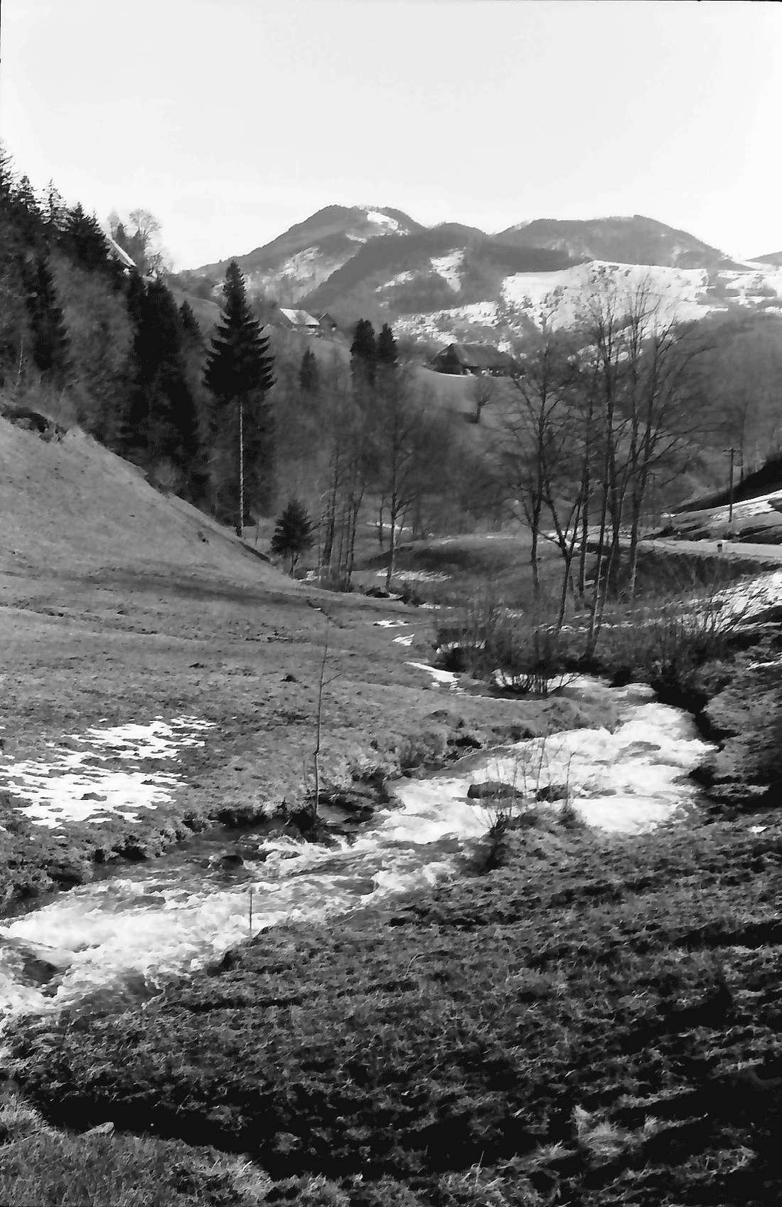 Aitern: Aitertal mit Blick auf Staldenkopf, Bild 1