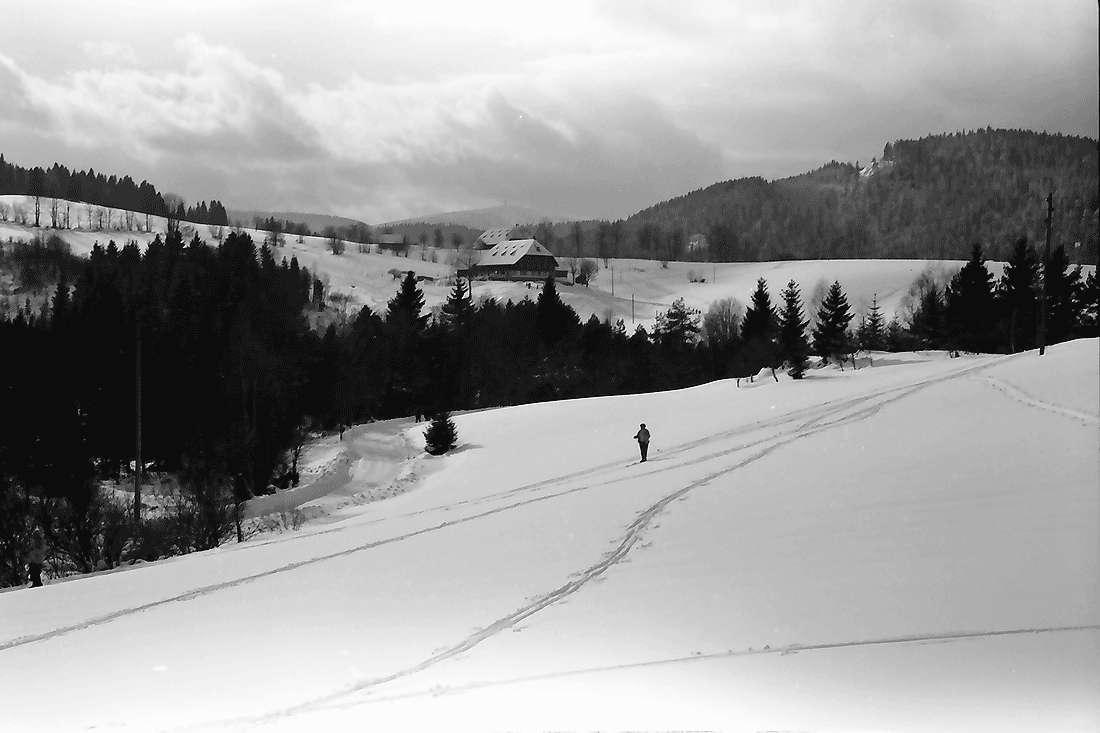 Hinterzarten: Winterlandschaft bei Erlenbruck, Bild 2