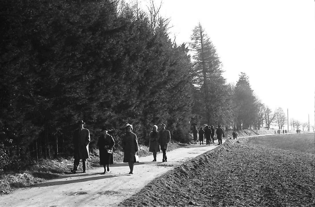 Horben: Spaziergänger in der Januarsonne am Wald, Bild 1