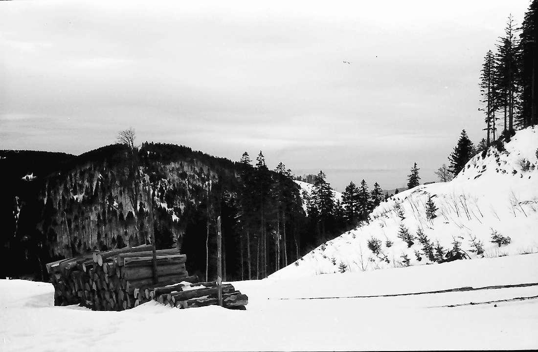 Rinken: Oberer Ausgang des Zastlertals; im Schnee, Bild 1