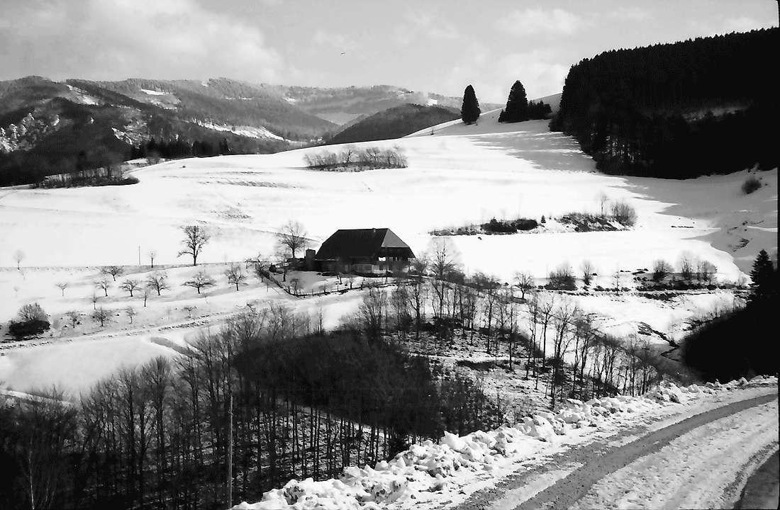 Horben: Hof bei Horben im Winter; mit Blick zum Schauinsland, Bild 2