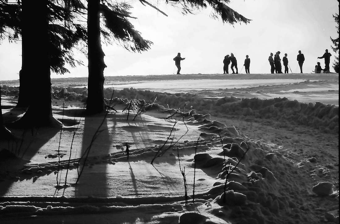 Breitnau: Skischule am Waldrand, Bild 1