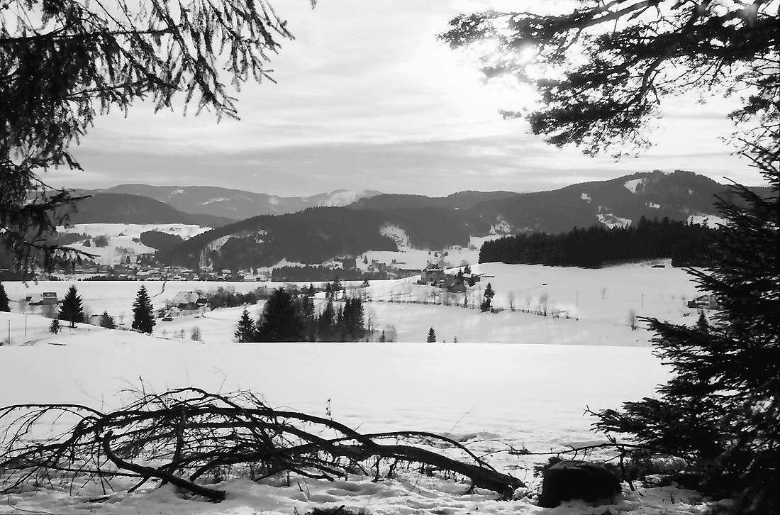 Hinterzarten: Tal mit Hinterzarten; vom Wald beim Heiligenbrunnen, Bild 2