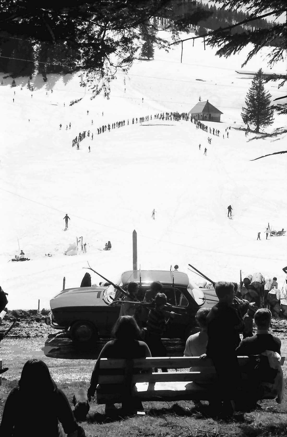 Oberried: Wintersportplatz Stollenbacher Hütte; am Wald auf Hang mit Skilift; oberhalb Zastlertal, Bild 1