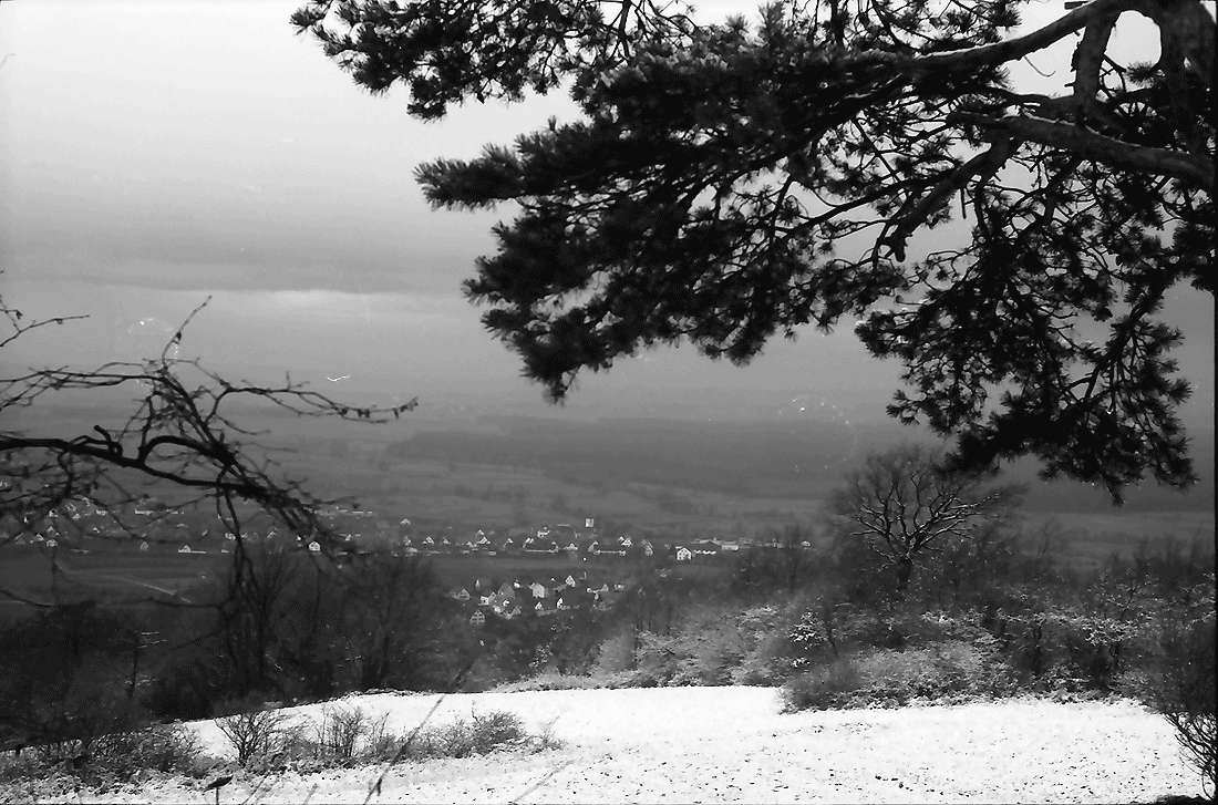 Ebringen: Blick zum Rheintal, Bild 2