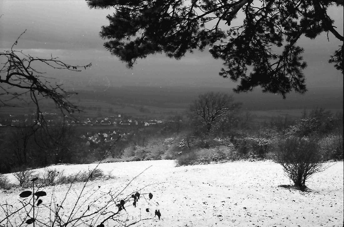 Ebringen: Blick zum Rheintal, Bild 1