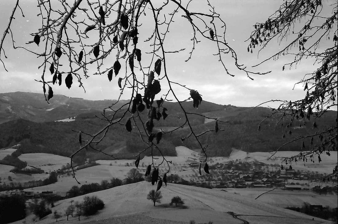 Wittnau: Blick zum Schauinsland; vom Rand des Schönbergs, Bild 2