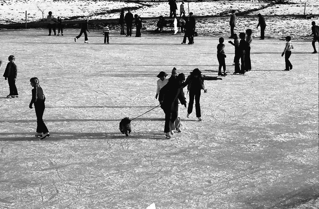 Hinterzarten: Eislaufplatz, Bild 1
