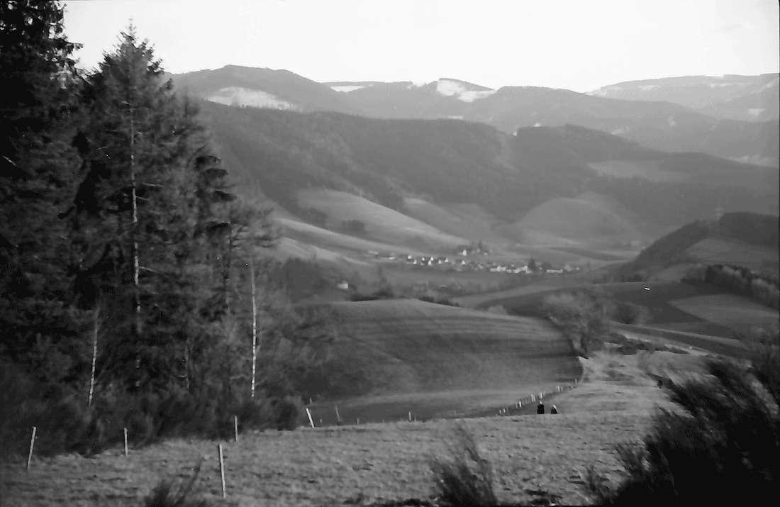 Stegen, Rechtenbach: Vom Grätlewald mit Blickrichtung ins Dreisamtal; ohne Personen, Bild 1