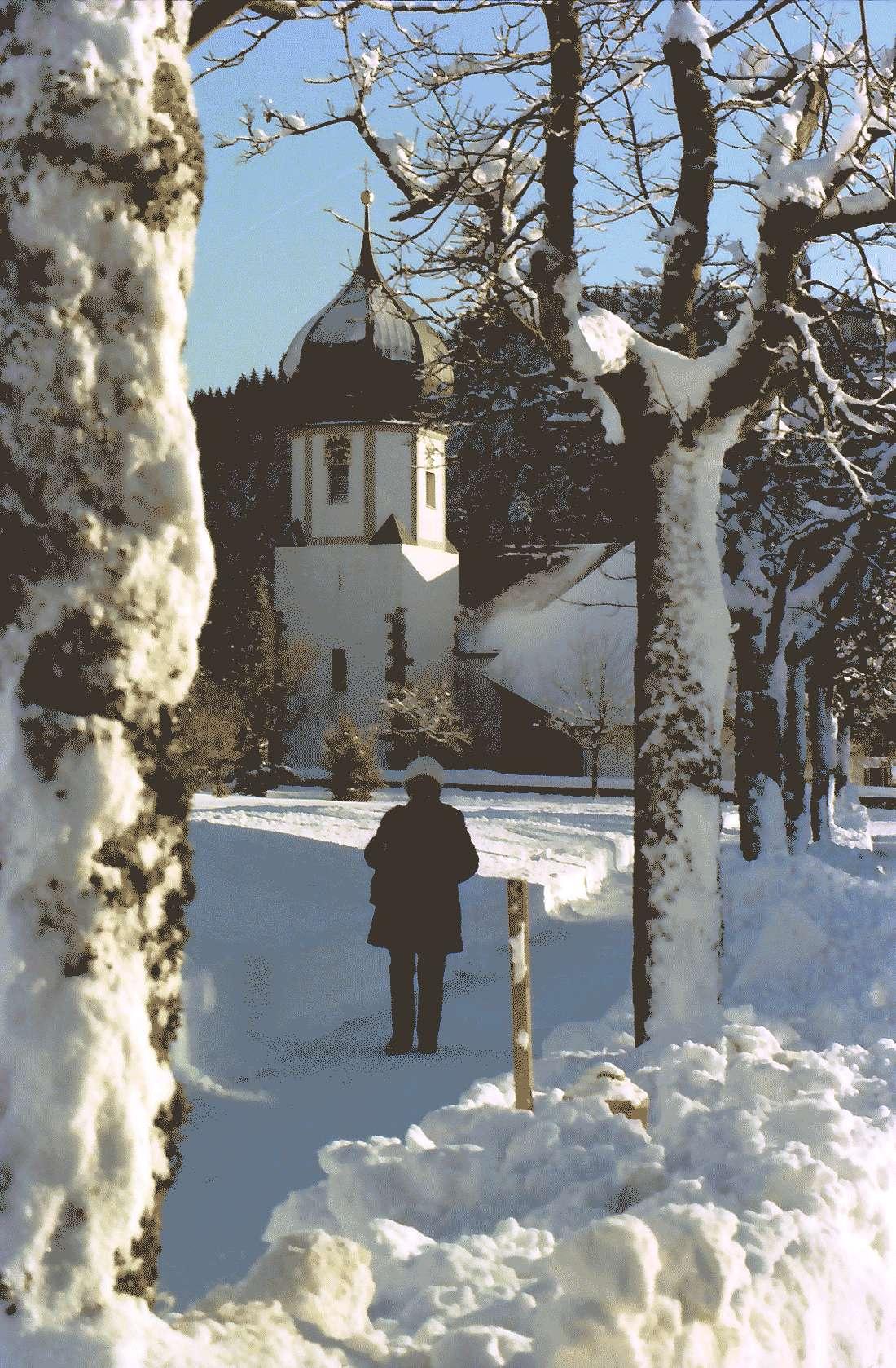 Hinterzarten: Pfarrkirche hinter verschneiter Baumallee, Bild 1