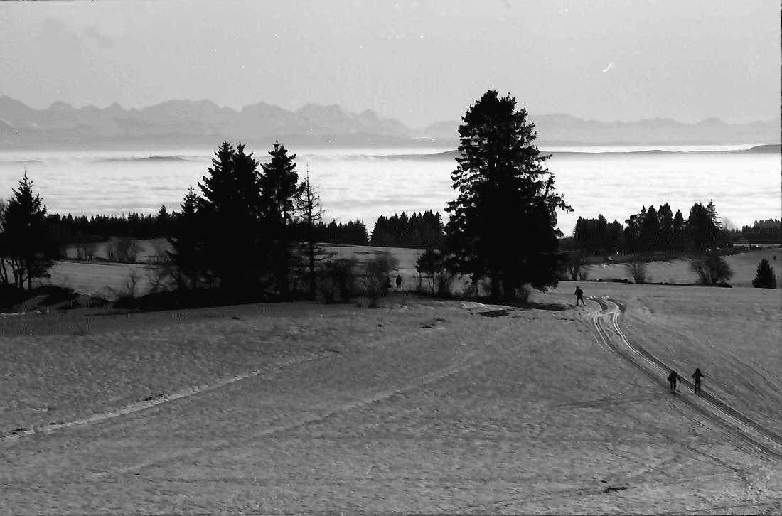 Höchenschwand: Von der Sonnenterrasse über den Ort auf das Nebelmeer mit Alpensicht; Vordergrund Schneefeld, West, Bild 2