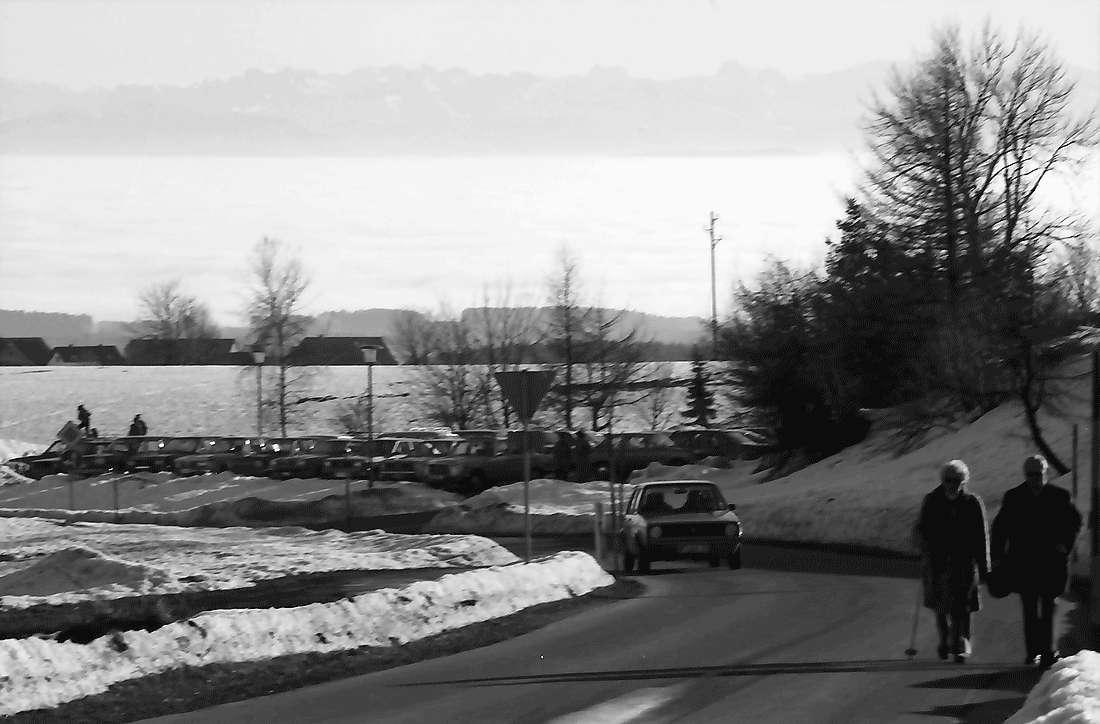 Höchenschwand: Ort und Straße mit Alpenpanorama, Bild 1