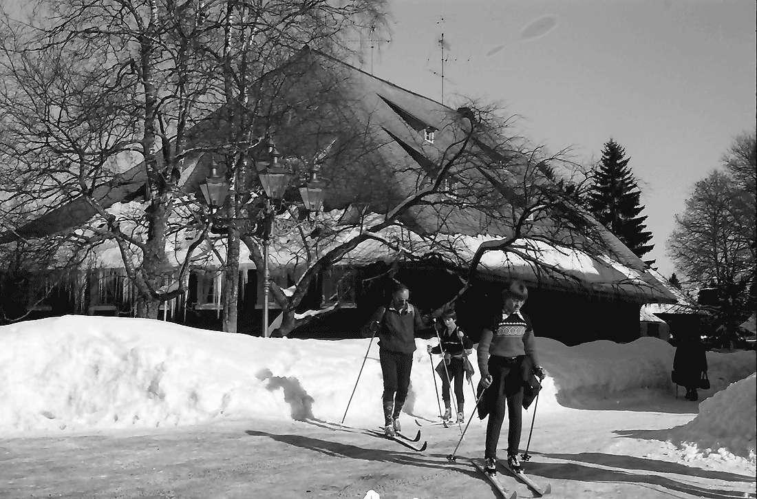 Hinterzarten: Eiszapfen am alten Schwarzwaldhof; Hotel Adler, Bild 1