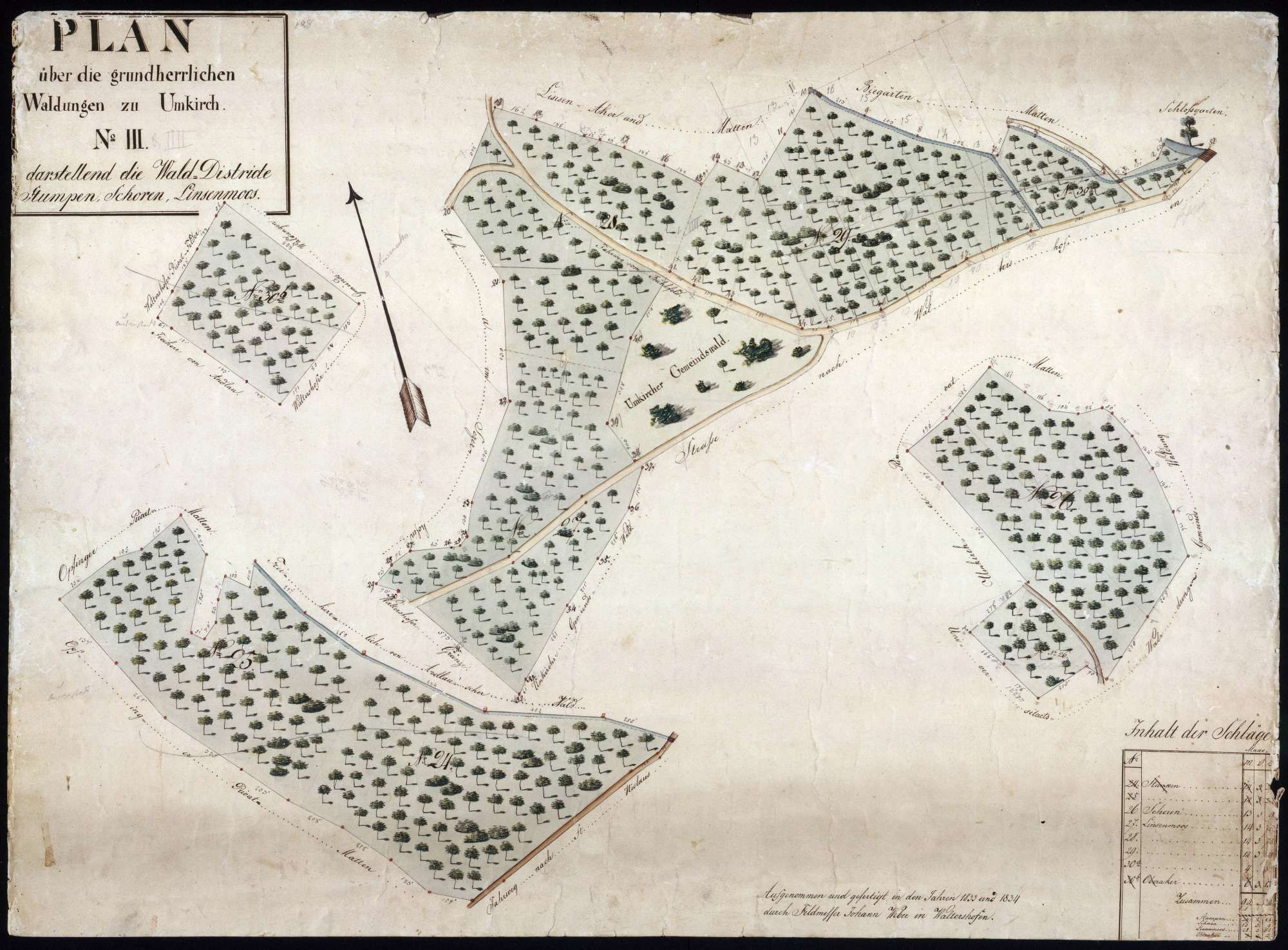 Plan über die grundherrlichen Waldungen zu Umkirch, Bild 1