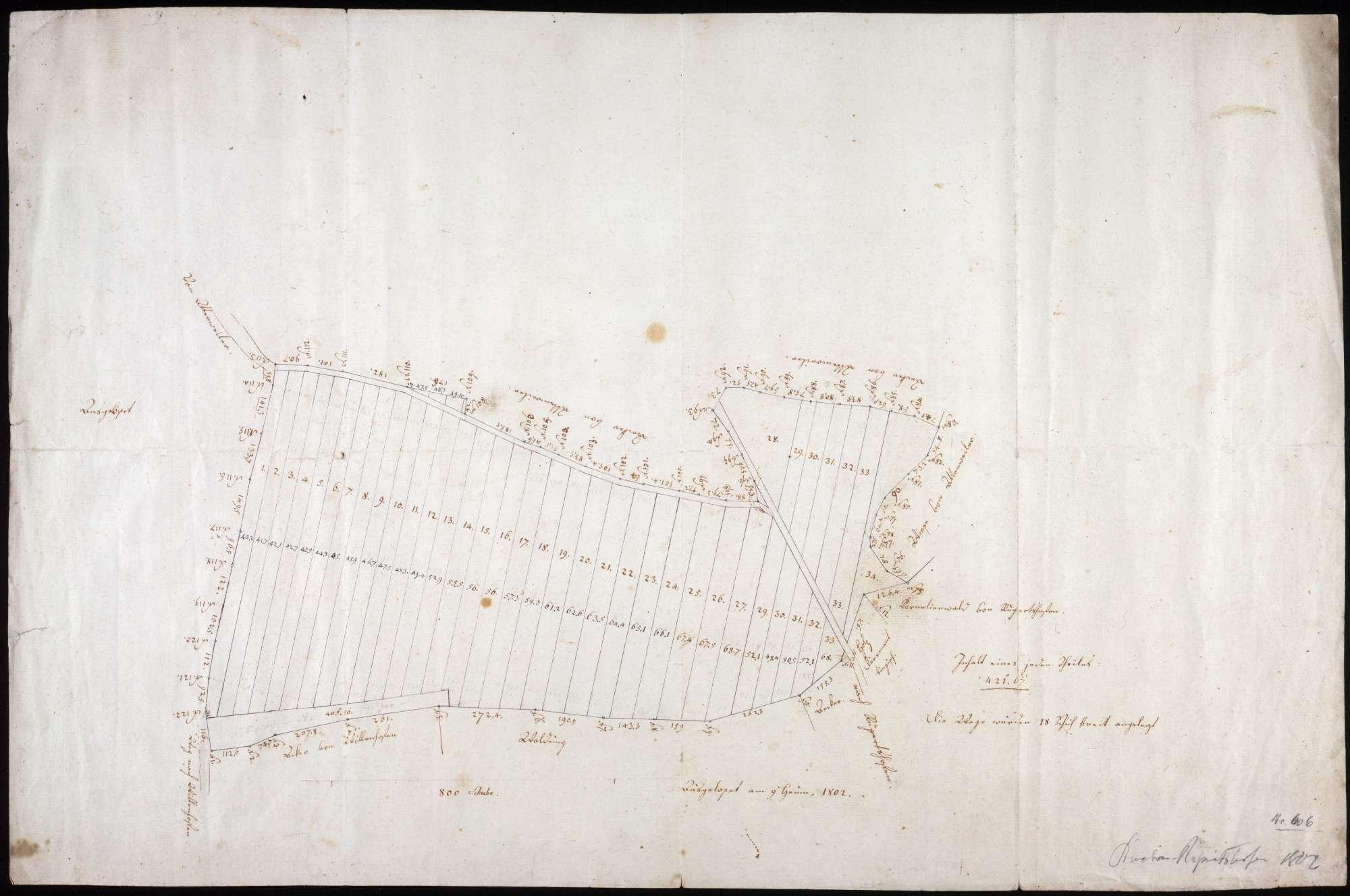 Vermessung und Aufteilung des Kornelierwaldes zu Rupertshofen Maßstab ca. 1 : 1600 handgez., Bild 1