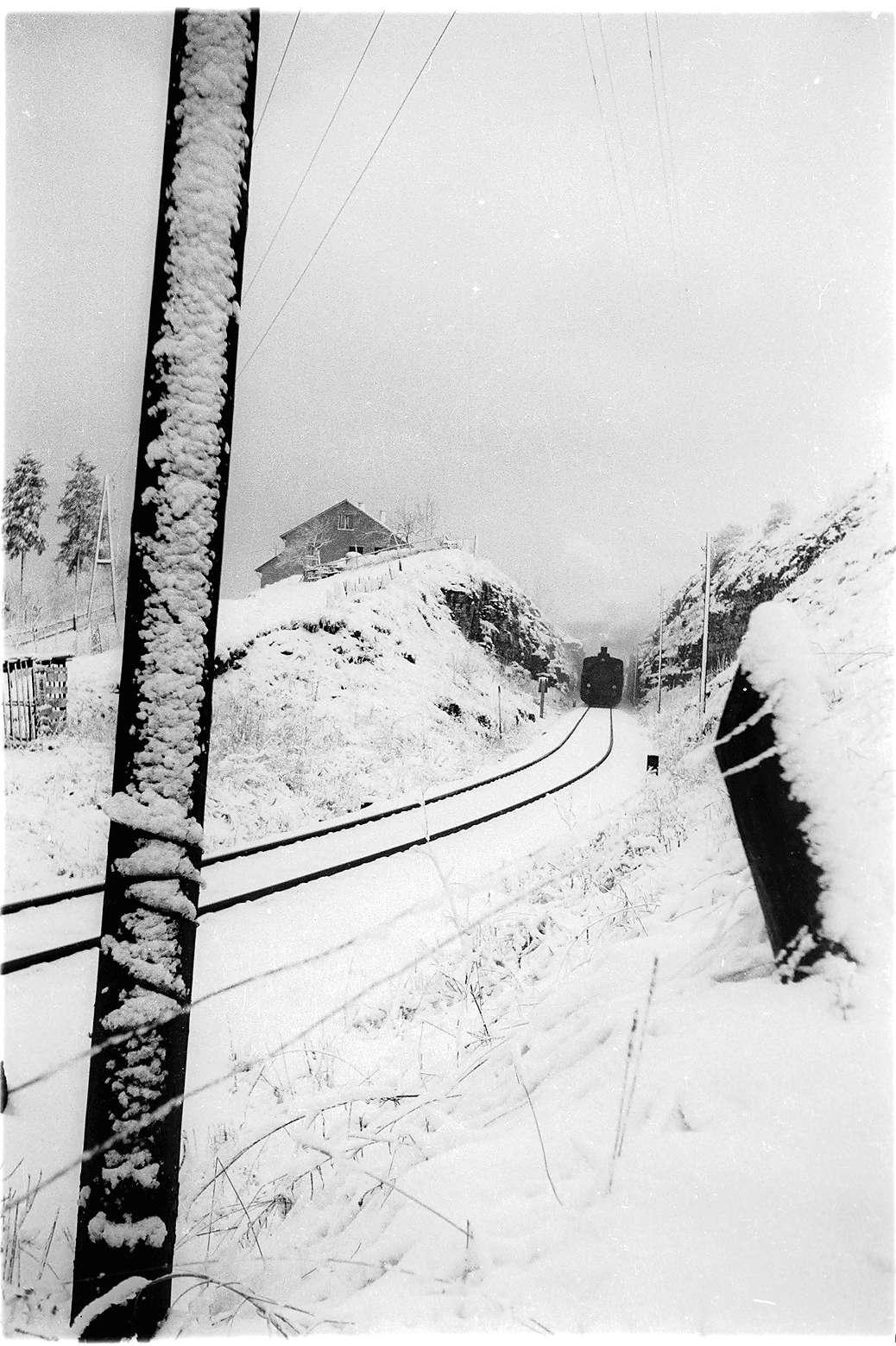 Gammertingen, beim Hummelberg, Lok 21, Güterzug 305, Bild 1
