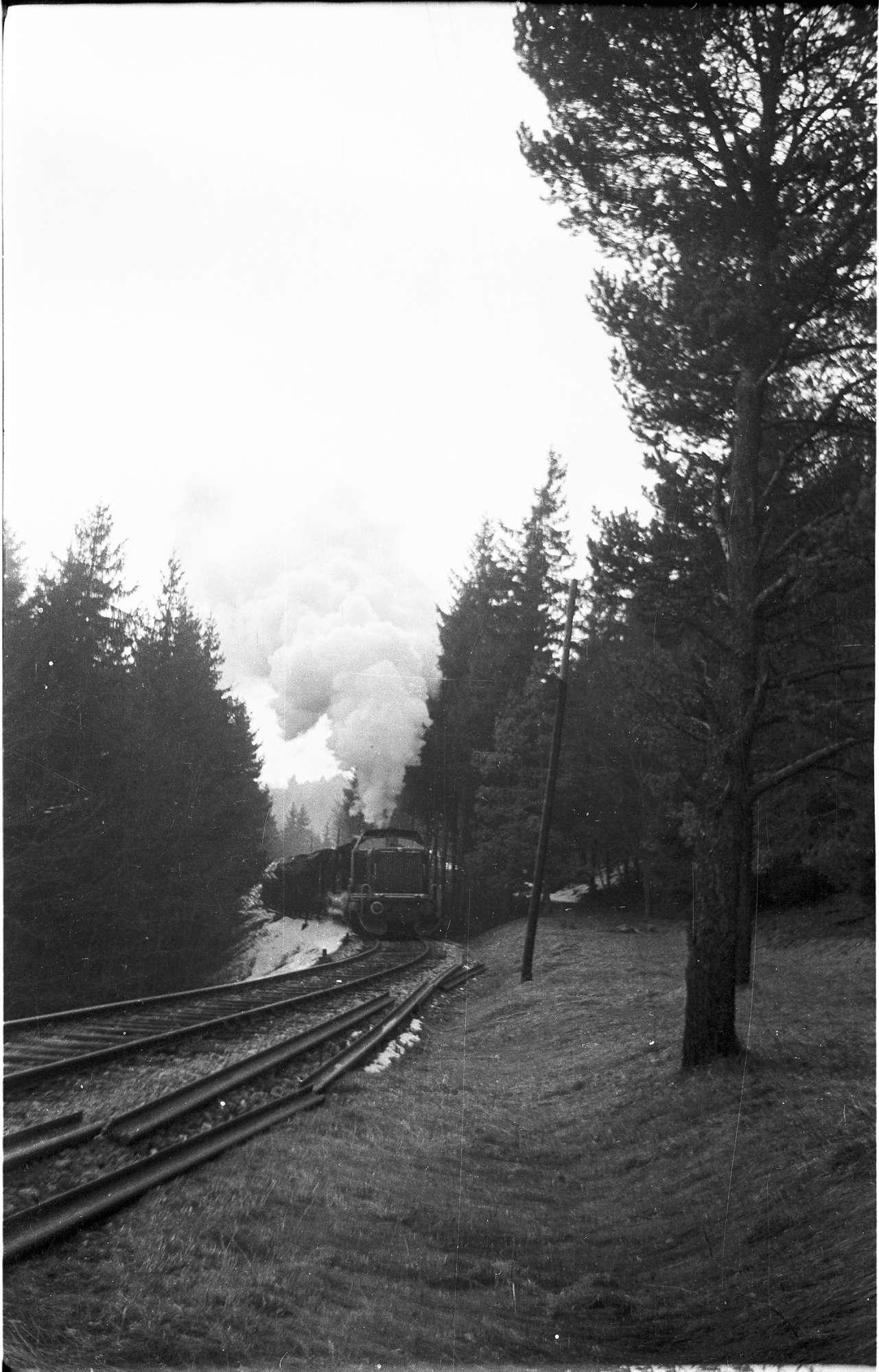 Diesellok V 82 und Dampflok 15, 313/ 308 b, Strecke Neufra - Gammertingen, die neuen Schienen der schweren Bauform S49 liegen bereit, Bild 1