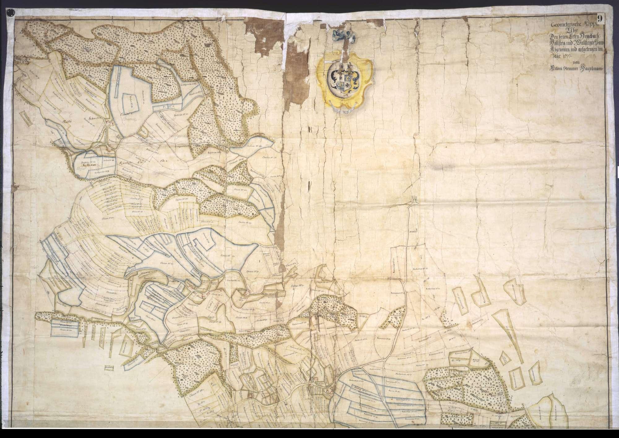 """Geometrische """"Mappa"""" über den Bann zu Breitenerlen, Heggelbach, Höllsteig und Waldsteig, Bild 1"""