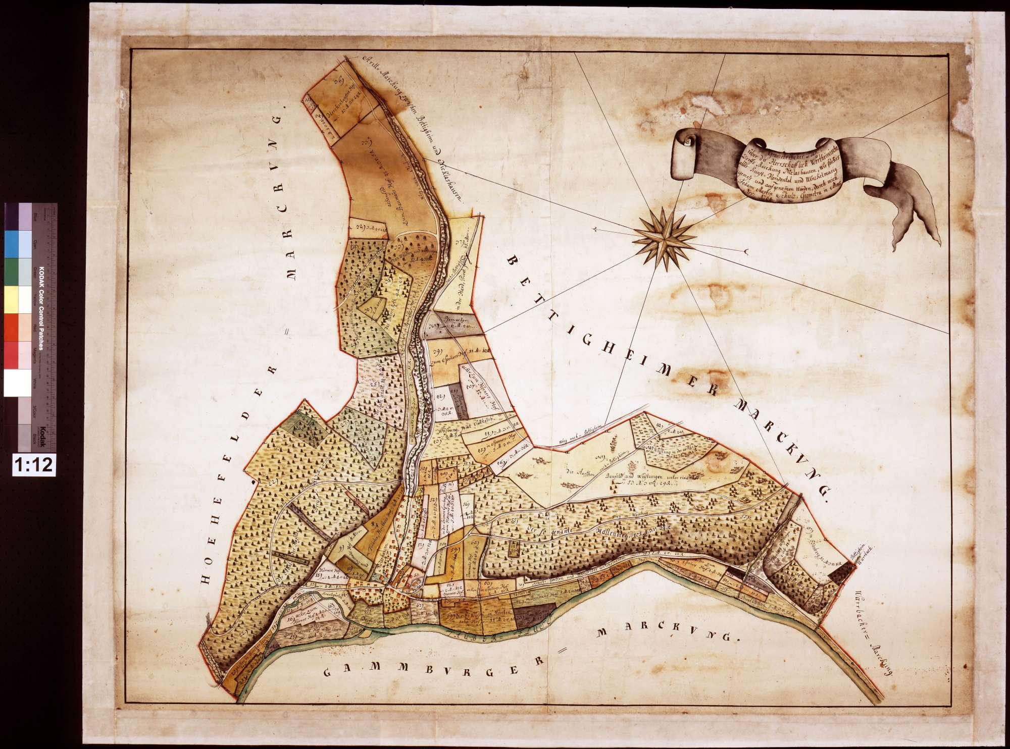 Geometrischer Plan über die herrschaftlich wertheimische Dorfsmarkung Niklashausen, wie solches alles kunst-, horizontal- und winkelmäßig gemessen und aufgenommen (Inselkarte), Bild 1