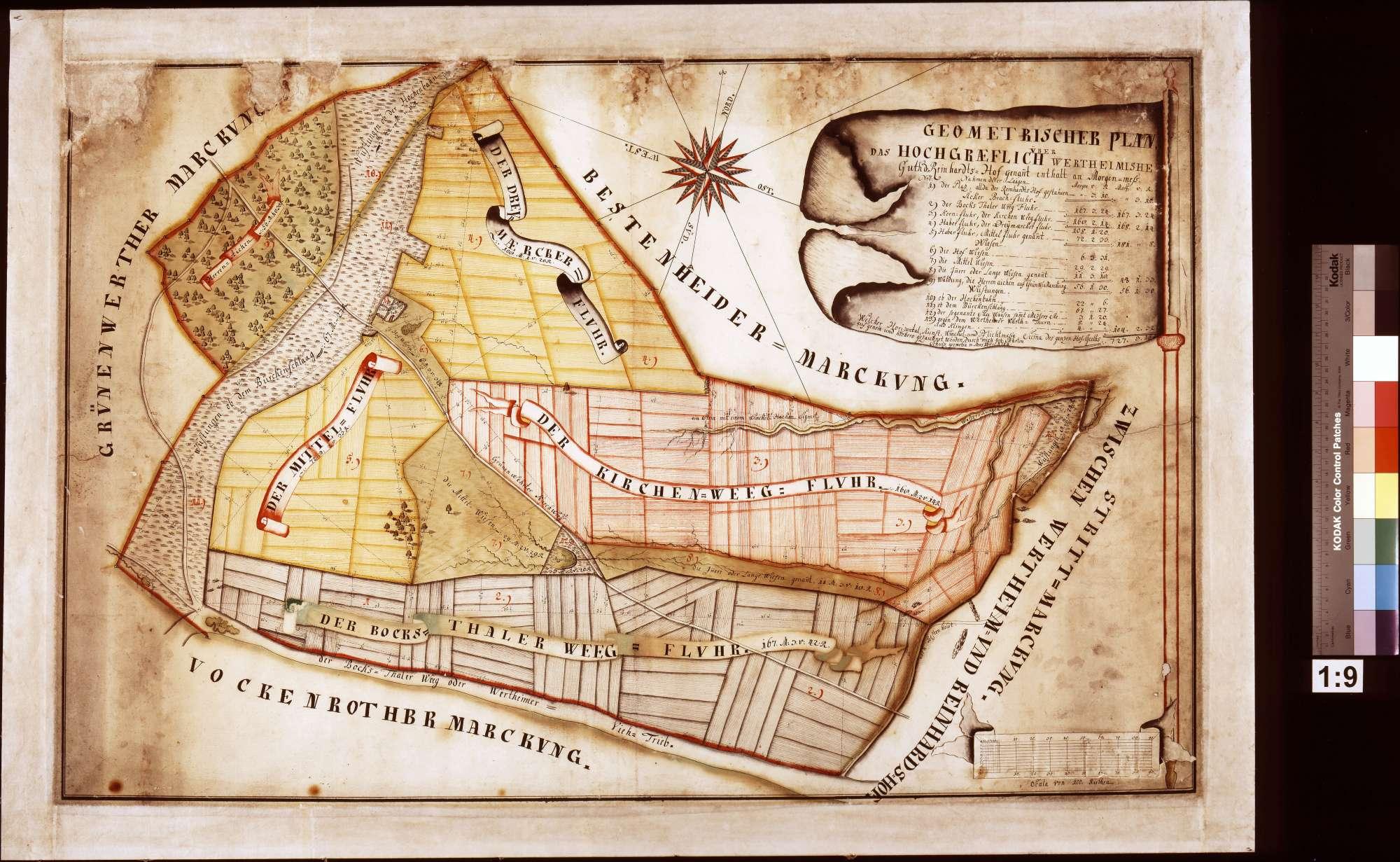 Geometrischer Plan über das wertheimische Gut Reinhardshof (Inselkarte), Bild 1